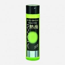 Ginkgo Biloba Shampoo - Protective
